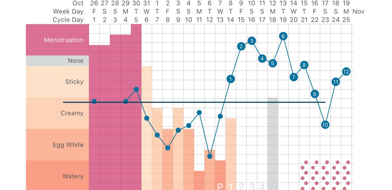 Fertility Awarness Method, natural birth control charting